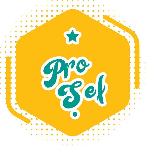 Pro Şef - Level 1